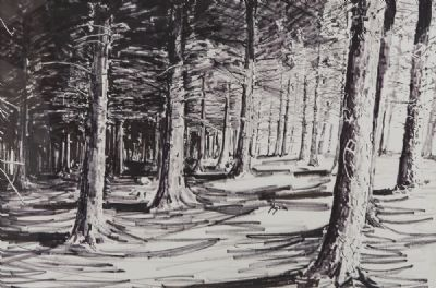 FOREST THREE by Brendan Early  at deVeres Auctions