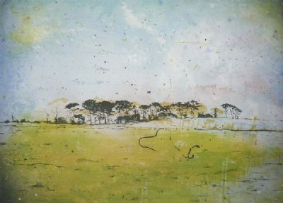PARLOUS LAND by Elizabeth Magill b.1959  at deVeres Auctions